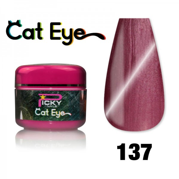 Gel Cat eye UV Magnetic 5ml Violet
